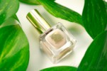 лак для ногтей Estee Lauder Pure Color в оттенке Nudite